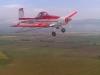 img-20121118-01194